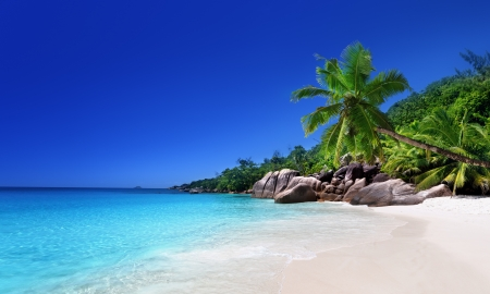 Photo pour beach at Praslin island, Seychelles - image libre de droit