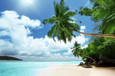 Foto de beach on Mahe island in Seychelles  - Imagen libre de derechos