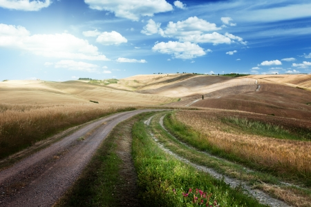 Photo pour Road between the Fields of Tuscany, Italy - image libre de droit