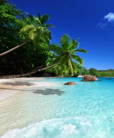 Photo for beach at Praslin island, Seychelles  - Royalty Free Image