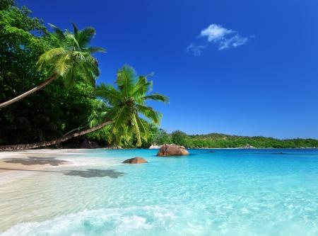 Foto de beach at Praslin island, Seychelles  - Imagen libre de derechos