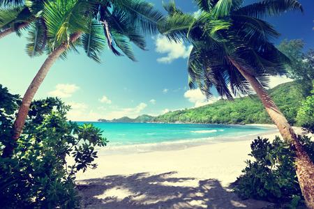 Photo pour beach Takamaka, Mahe island, Seychelles - image libre de droit