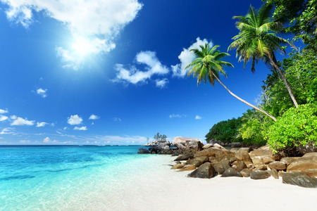 Photo for beach on Mahe island, Seychelles - Royalty Free Image