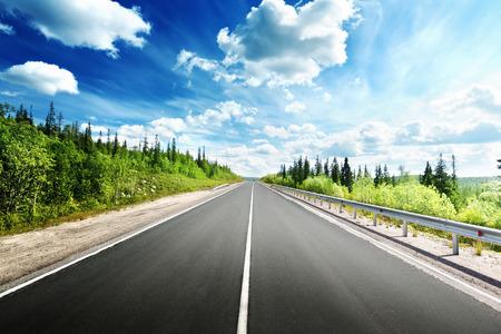 Photo pour road in north forest - image libre de droit