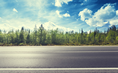 Photo for asphalt road and forest - Royalty Free Image