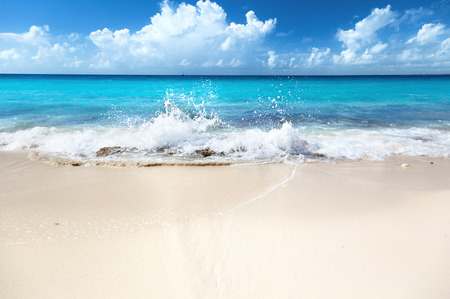 Photo pour sand of beach caribbean sea - image libre de droit