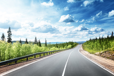 Foto per road in north forest - Immagine Royalty Free