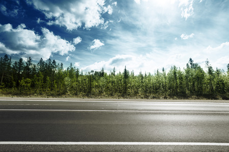 Photo for road in mountain forest - Royalty Free Image