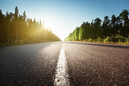 Photo pour road in summer forest - image libre de droit