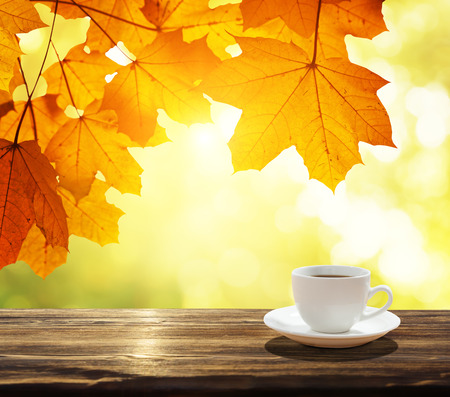 Photo for cup of coffee and autumn leaves - Royalty Free Image