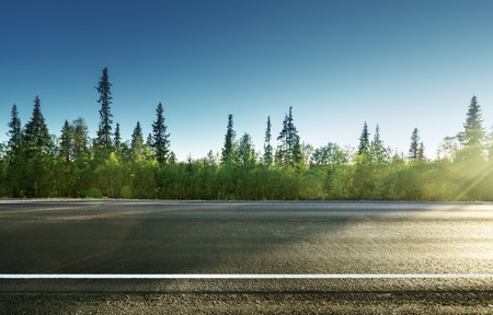 Photo pour asphalt road in forest - image libre de droit