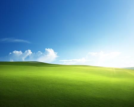 Photo pour spring grass, golf field - image libre de droit