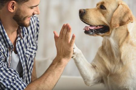 Photo pour man holding dog's paw on a sofa, close up - image libre de droit
