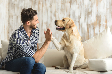 Photo for high five human, dog giving a paw to a handsome man in the house - Royalty Free Image