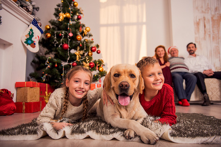 Foto de Happy children are lying on floor near Christmas tree and embracing dog. They are looking at camera and smiling. Parents are looking at them with proud - Imagen libre de derechos