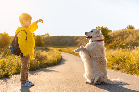 Photo pour Joyful boy is training his Labrador dog road near grassland. The animal is standing on lower paws with cheerfulness - image libre de droit