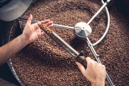 Foto de Top view close up male hand keeping special scapula stick with burnt seeds. Check concept - Imagen libre de derechos