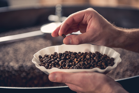 Foto de Close up man hand taking little brown grain from saucer. He checking degree of roasting it. Monitor concept - Imagen libre de derechos