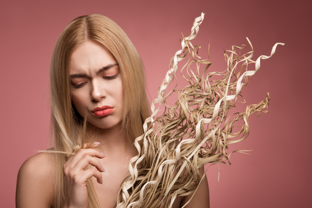 Foto de Portrait of upset woman holding bundle of dried grass and looking at her damaged tips of locks. Isolated on rose background - Imagen libre de derechos
