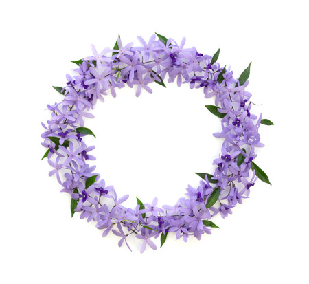 Photo pour frame of purple flowers on a white background , card, greeting, template - image libre de droit
