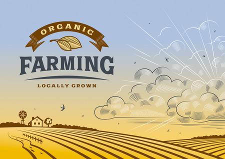 Ilustración de Organic Farming Landscape - Imagen libre de derechos