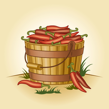 Illustration for Retro bucket of chili peppers - Royalty Free Image