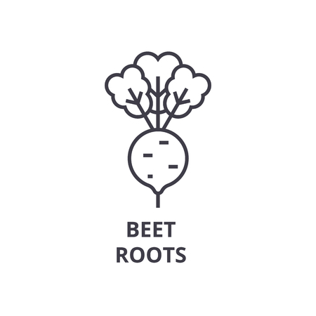 Illustration for Beet, roots line icon, outline sign, linear symbol, flat vector illustration. - Royalty Free Image