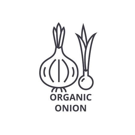 Illustration for Organic onion line icon, outline sign, linear symbol, flat vector illustration. - Royalty Free Image