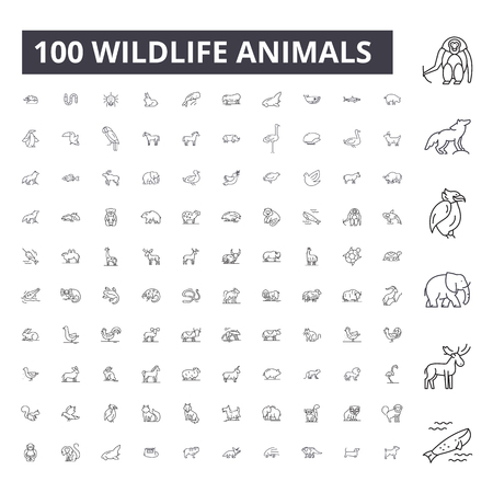 Illustration pour Wildlife animals editable line icons, 100 vector set on white background. Wildlife animals black outline illustrations, signs, symbols - image libre de droit