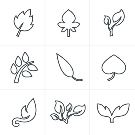 Illustration for Line Icons Style  leaf icon - Royalty Free Image