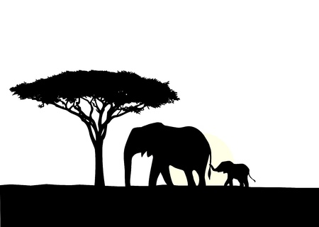 illustration of African elephant with baby silhouette