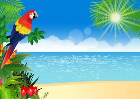 Illustration pour illustration of Macaw with tropical beach background - image libre de droit