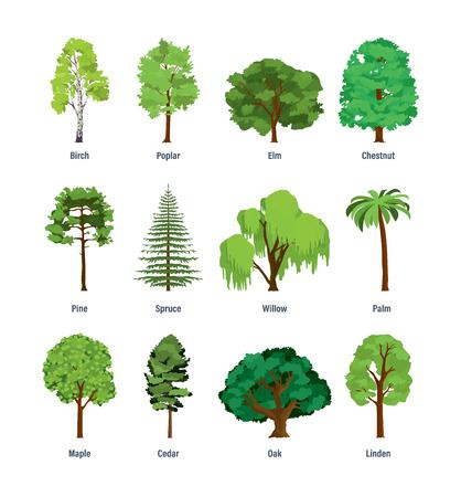Ilustración de Collection of different kinds of trees. - Imagen libre de derechos