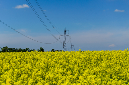 Photo for High voltage power line against blue sky - Royalty Free Image