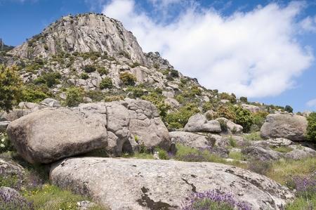 Photo pour Pico de la Miel  Honey Peak   It is a granite batholith located at  Sierra de la Cabrera, Madrid, Spain - image libre de droit