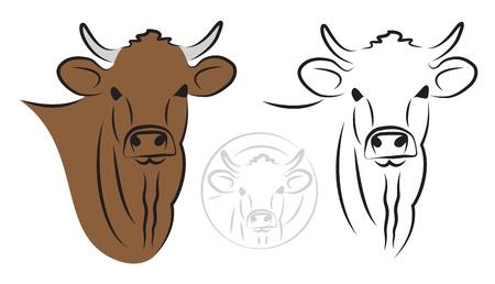 Cow set on white background