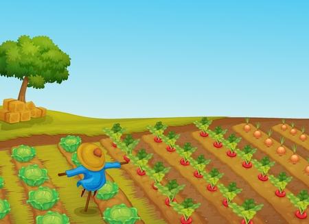 Illustration pour Illustration of a scarecrow in a vegetable patch - image libre de droit