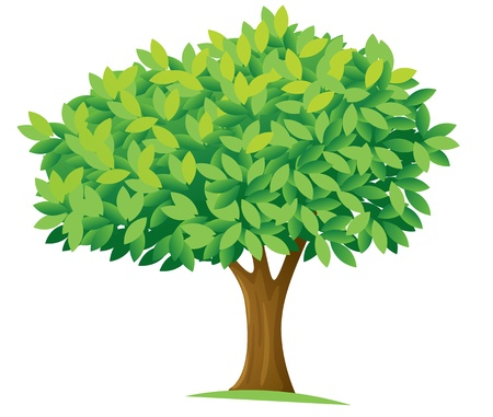 Illustration for illustration of a tree on a white background - Royalty Free Image