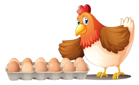 Illustration of the dozen of eggs in a tray and the hen on a white background