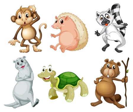 Illustration of the six different kinds of wild animals on a white background
