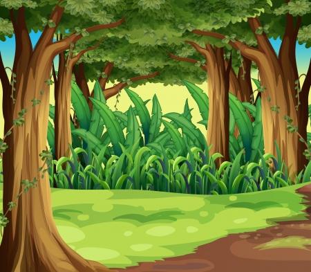 Ilustración de Illustration of the giant trees in the forest - Imagen libre de derechos