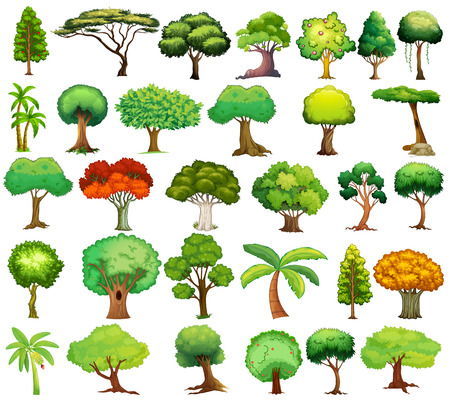 Illustration pour Illustration of different kind of tree - image libre de droit