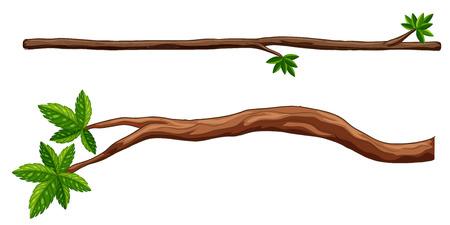 Illustration pour Illustration of two closeup branches - image libre de droit