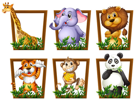 Photo pour Illustration of many animals in a wooden frame - image libre de droit
