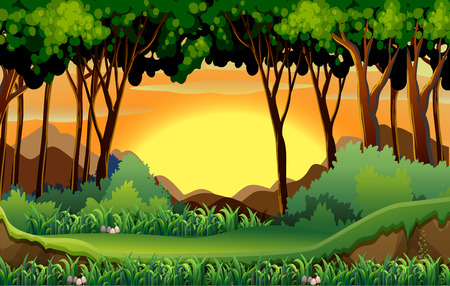 Illustration of a scene of a forest at sunset