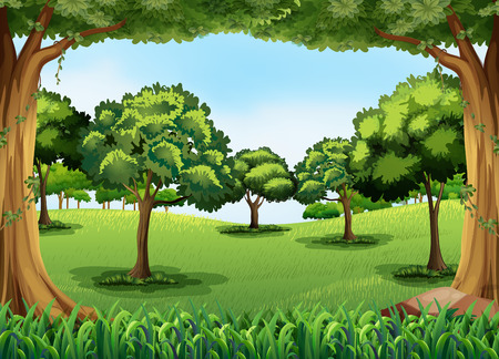 Illustration pour Forest scene at day time - image libre de droit