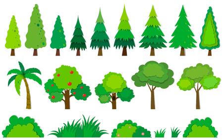 Illustration pour Different kind of trees illustration - image libre de droit