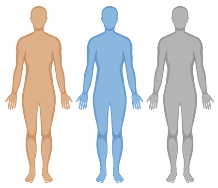 Illustrazione per Human body outline in three colors illustration - Immagini Royalty Free