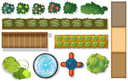 Illustration pour Top view of plants and pond in garden illustration - image libre de droit