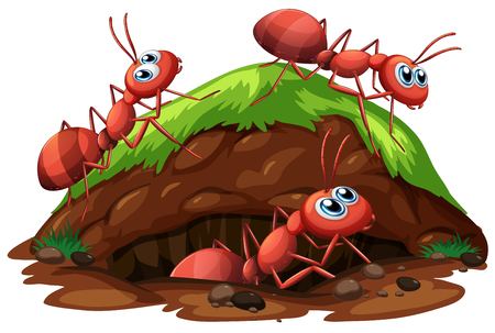 Ilustración de Worker Ants on White Background illustration - Imagen libre de derechos
